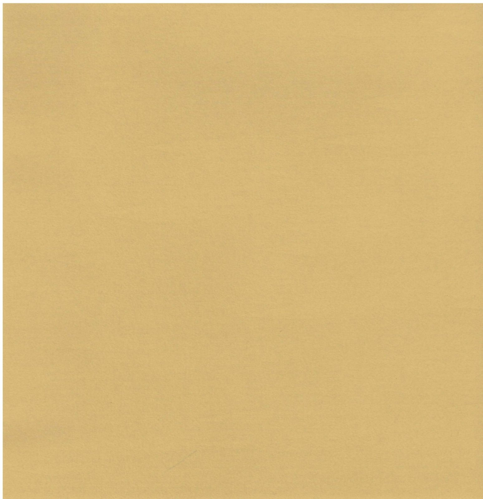 AC Cardstock 12X12 doux/lisse Cassonade 80lbs - Smooth Cardstock, Brown Sugar Item # 71768