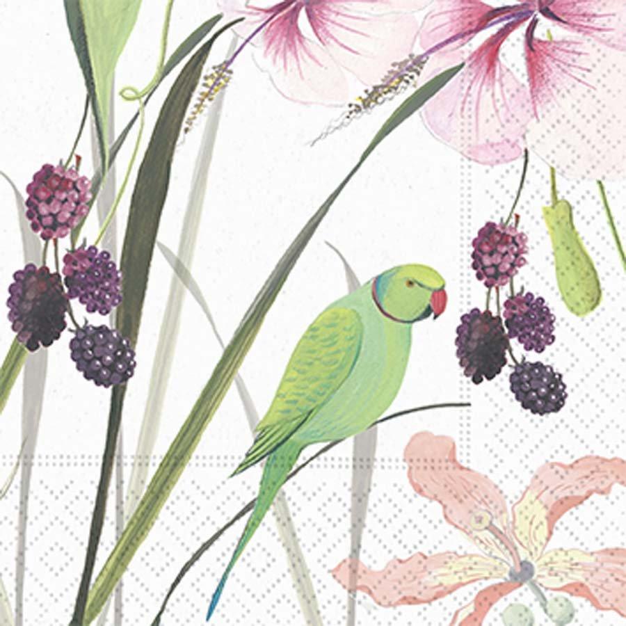 Paradise Garden Bev Napkins