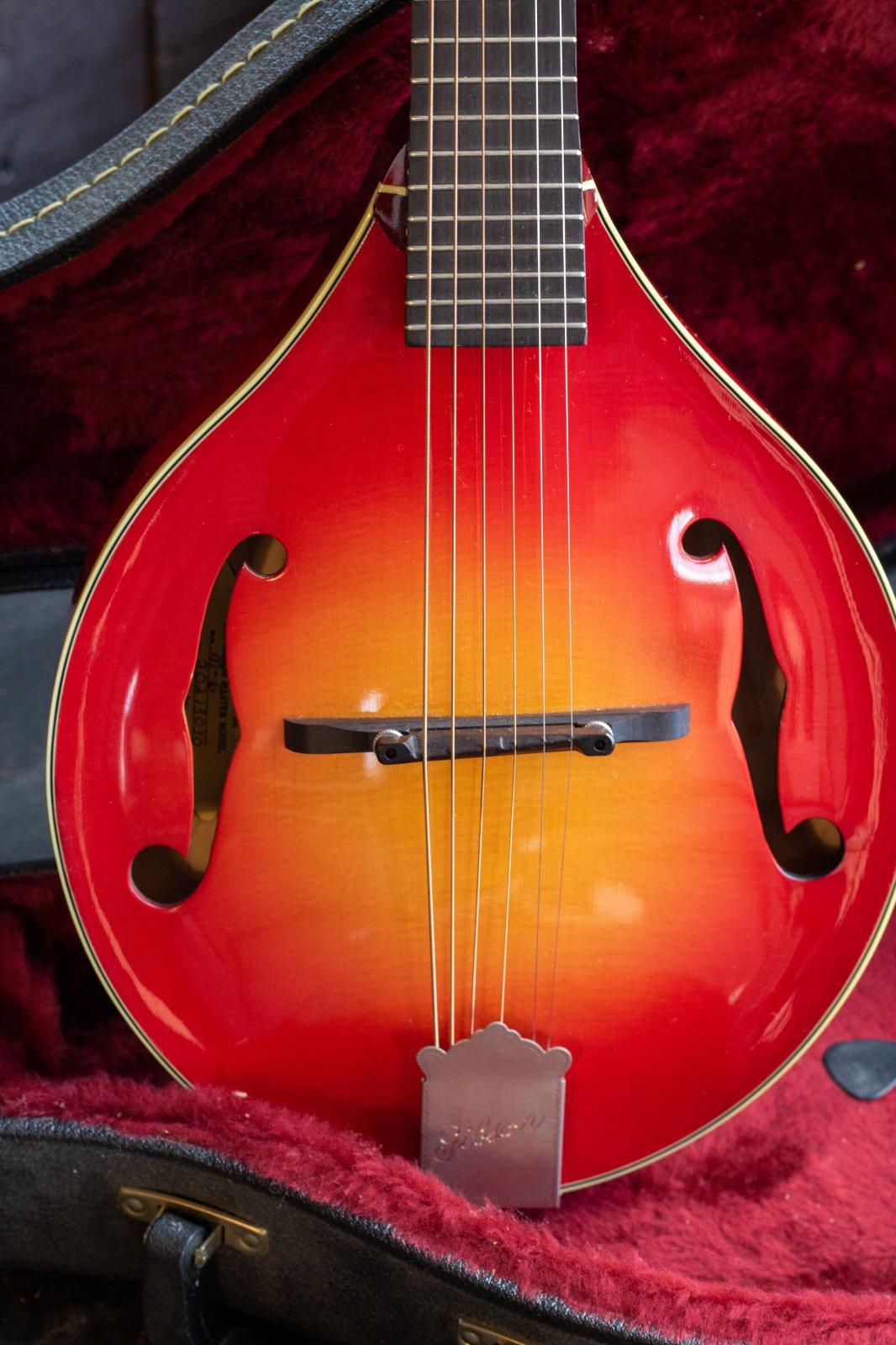 Gibson M-6 Octave Mandolin Guitar