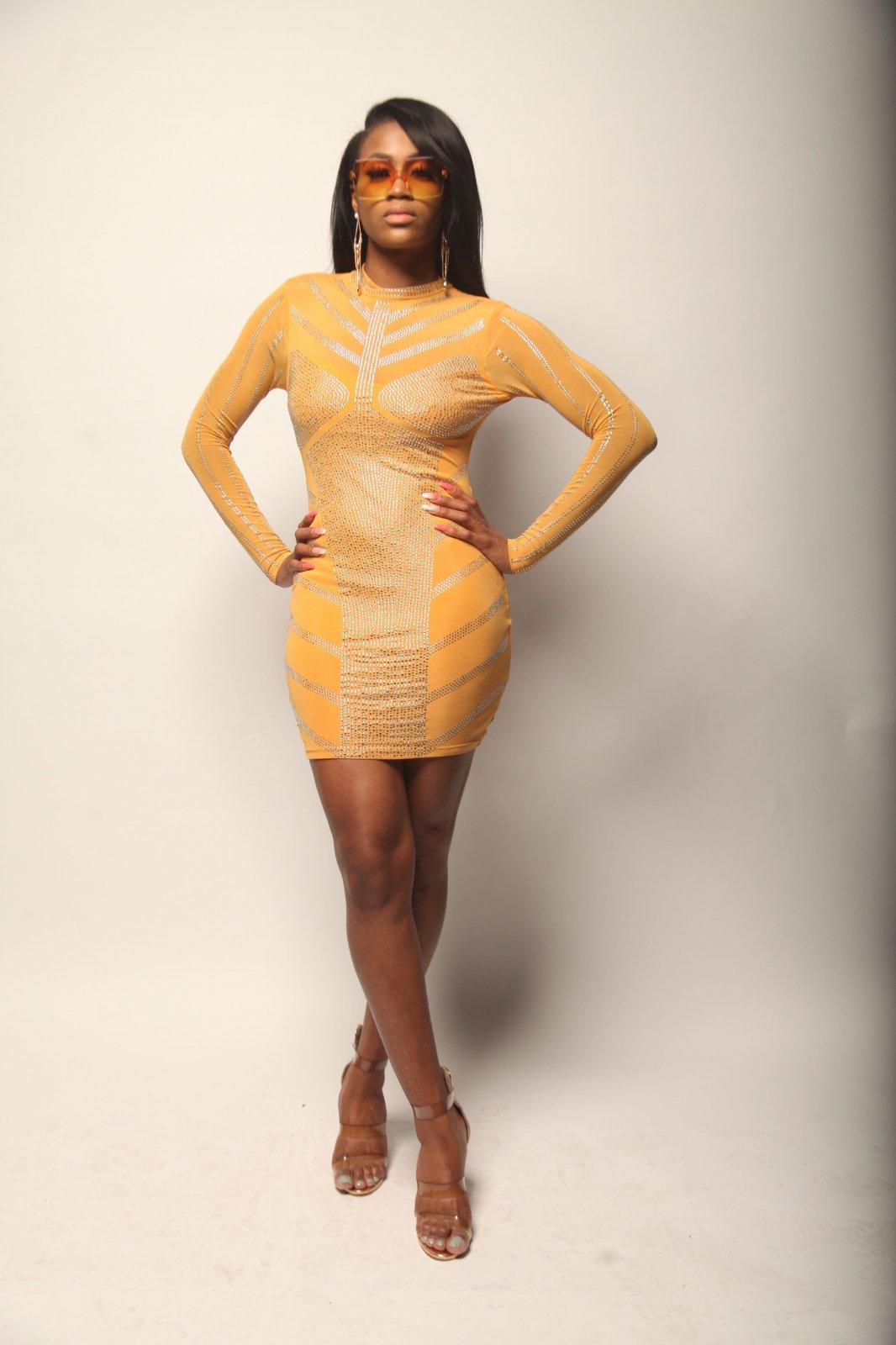 Studded Sheer Dress