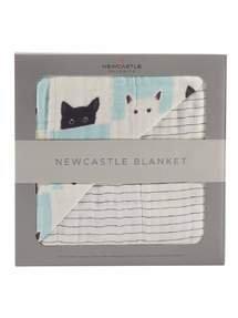 Newcastle Classics - Peek-A-Boo Cats And Pencil Stripe Blanket Default