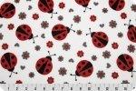 Lady Bug Cuddle - Scarlet