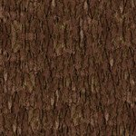 QT Nocturnal Wonders TREE BARK BROWN