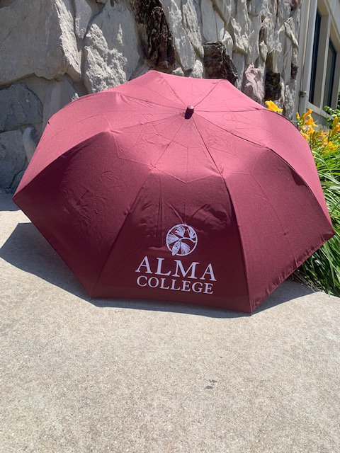 42in Classic Umbrella