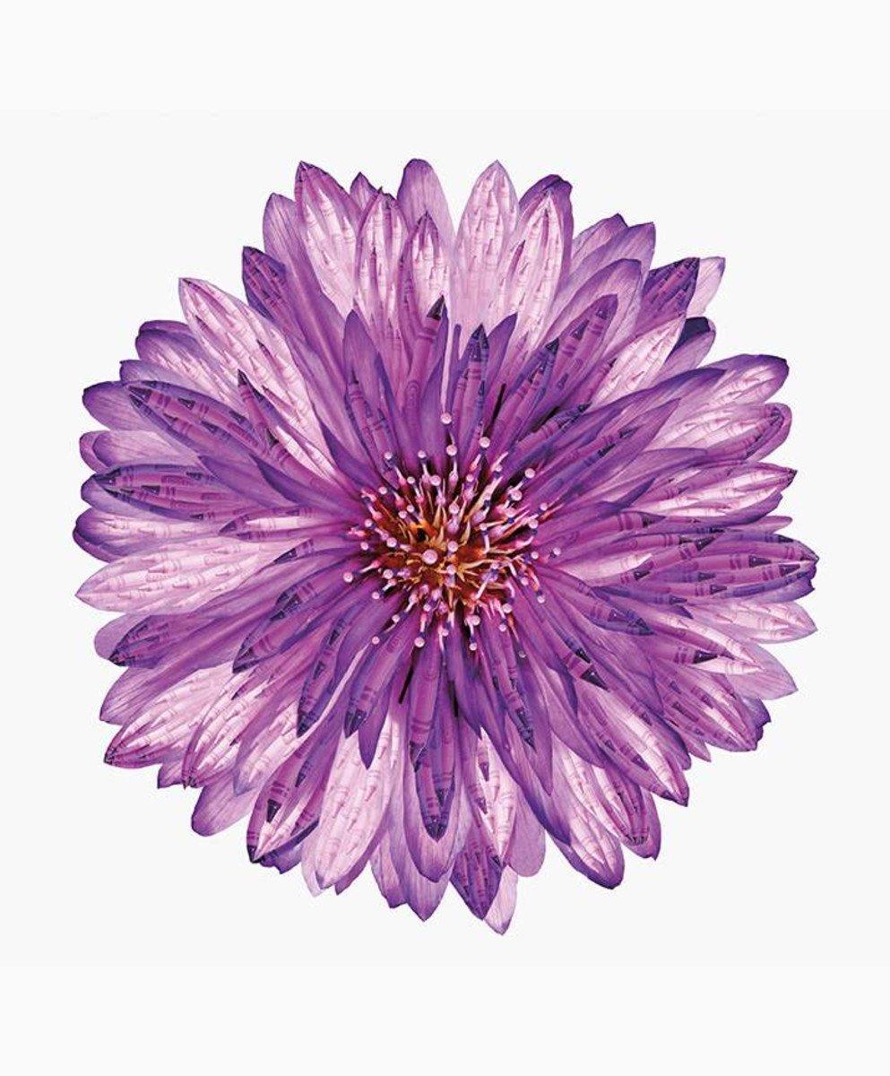 RILEY BLAKE IT'S A CRAYOLA WORLD FLOWER 36 PANEL