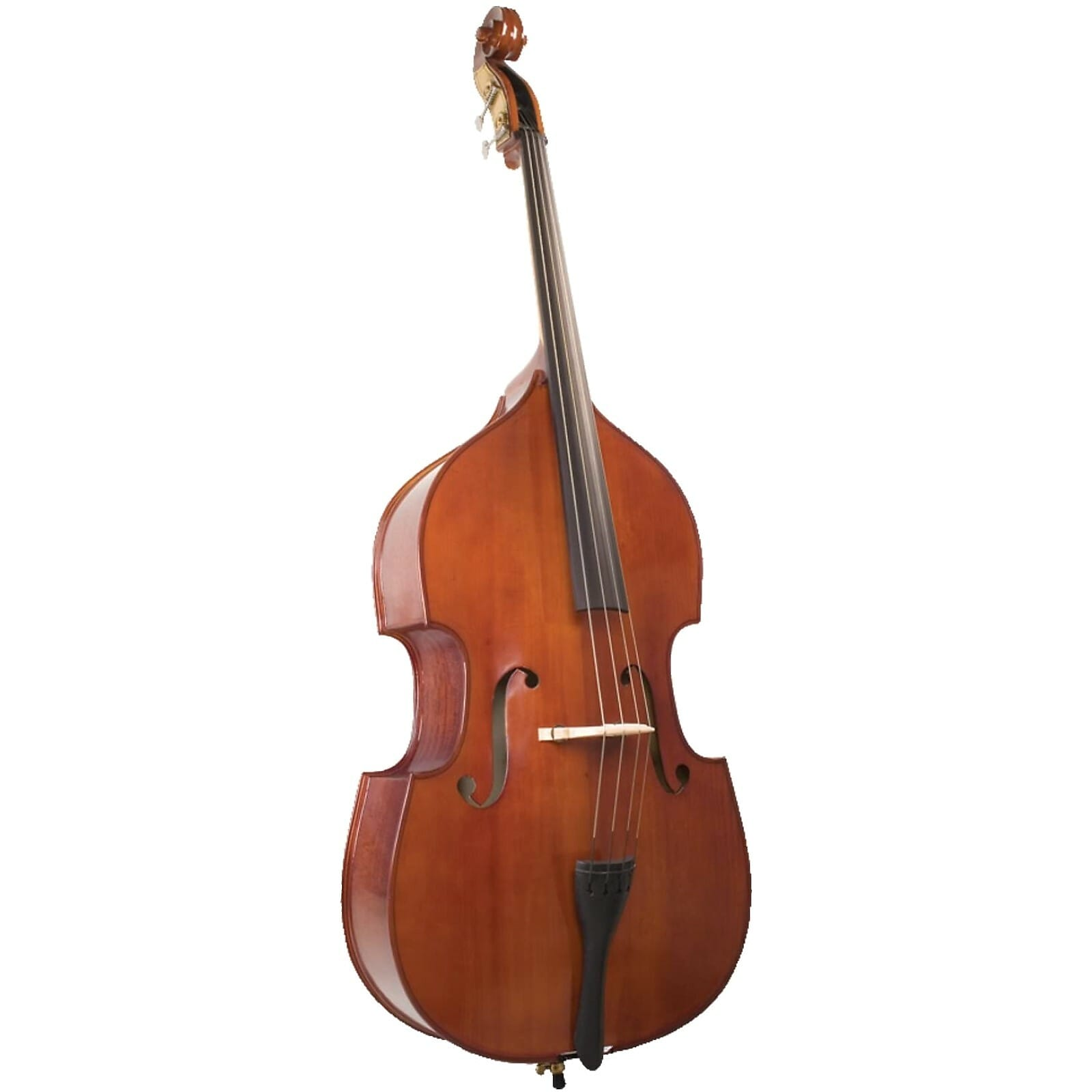 Bass For Rent