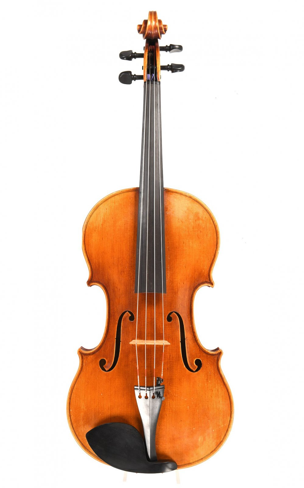 Violas For Rent