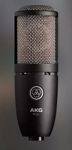 AKG P220 Studio Condenser Microphone
