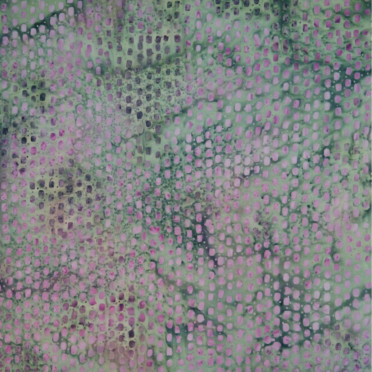 Parkside-LS-4-7659 Lavish lilac