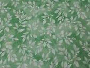 Mimosa -  Green
