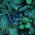 casablanca by jinny beyers-green
