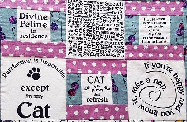 Cat Panel