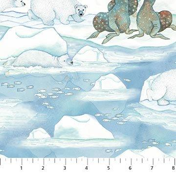 NM Arctic Wonders 23420-42
