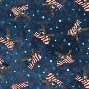 NM Stars & Stripes NAVY MULTI