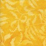 Full Bloom Parsley - Light and Dark Orange