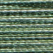 Multi-Color Isacord - 9805 Shades of Grass