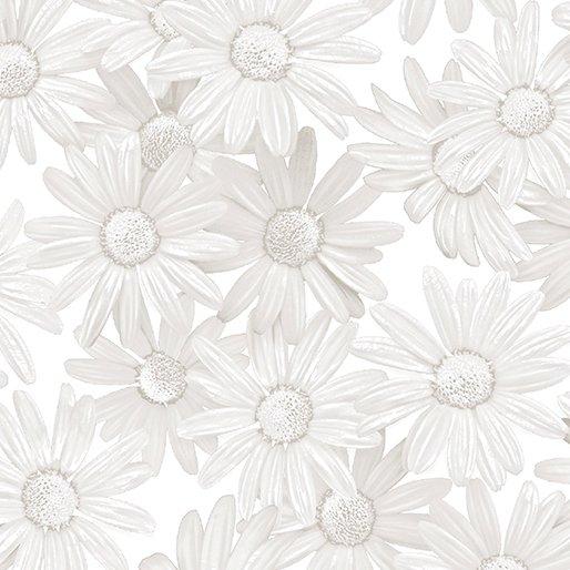 White Out White Daisy - Taupe/White