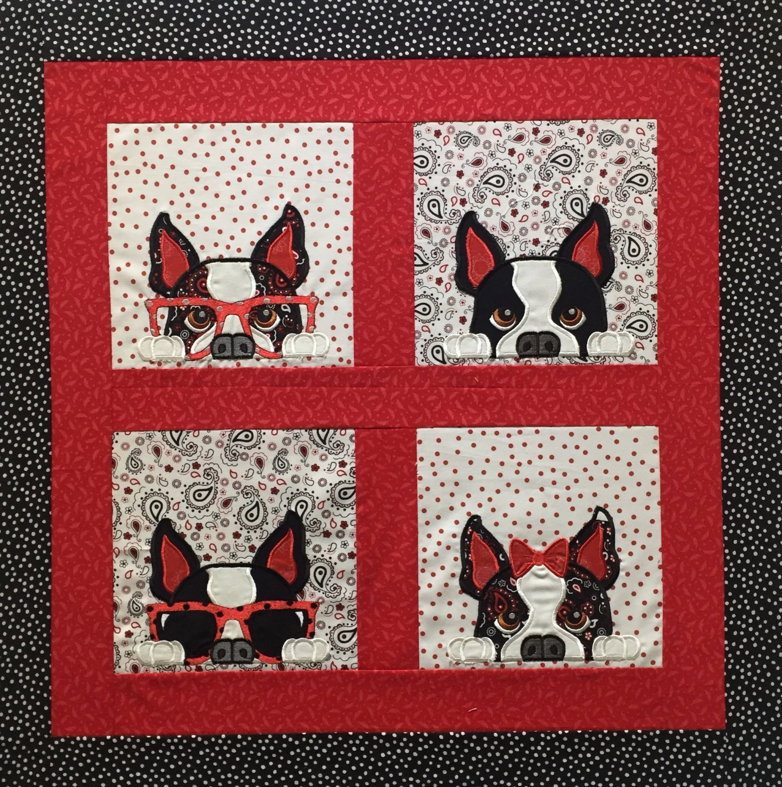 Boston Terrier Peek-a-Boo Designs