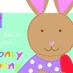 Huggable & Loveable Books - Honey Bunny