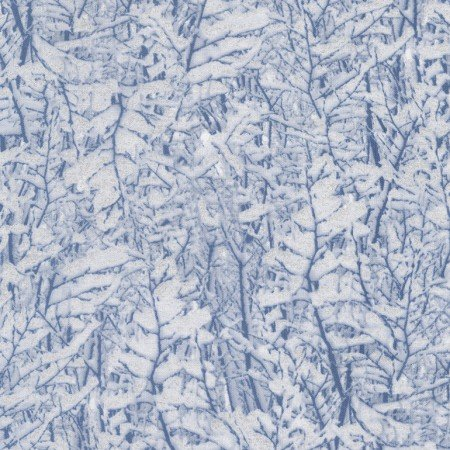 Snowy Trees Snow