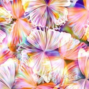 Hoffman Spectrum Print - Punch Butterfly
