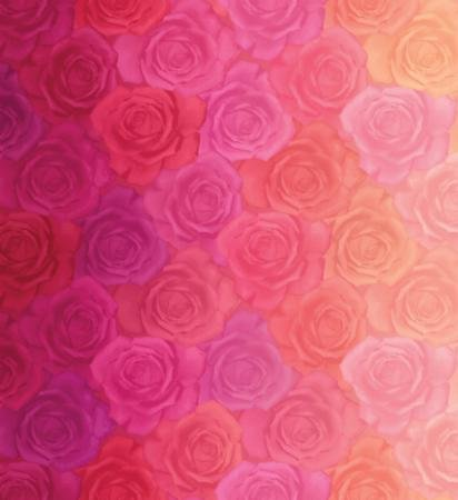Gradients - Reds Pinks Roses