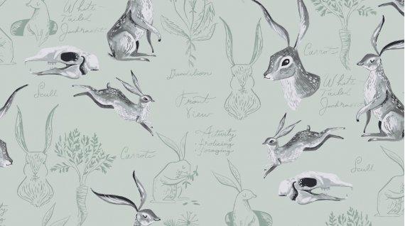 Gardenia - Rabbit Study Misty