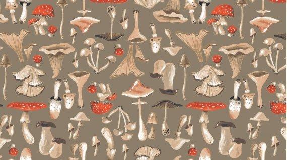Gardenia - Mushrooms Praline