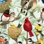 Housing Boom - Beautiful Birds Azure