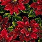 Poised Poinsettia - Red Flowers Black