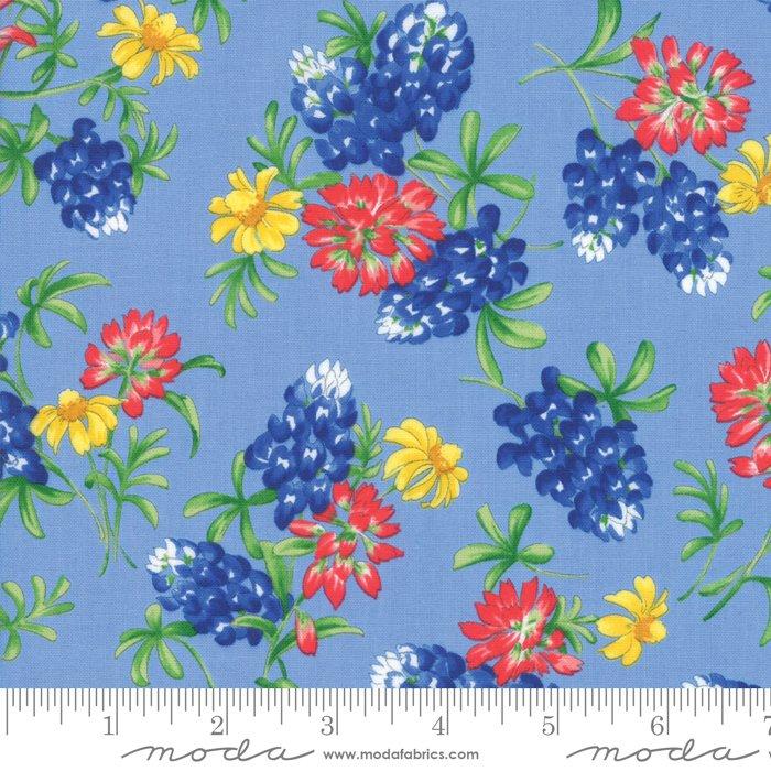 Fields of Blue 33452 13 Sky