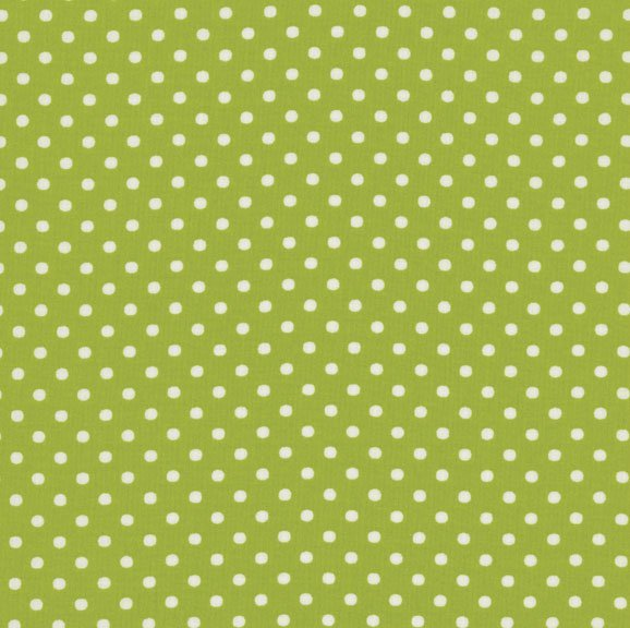 8174-081 Crazy For Dots