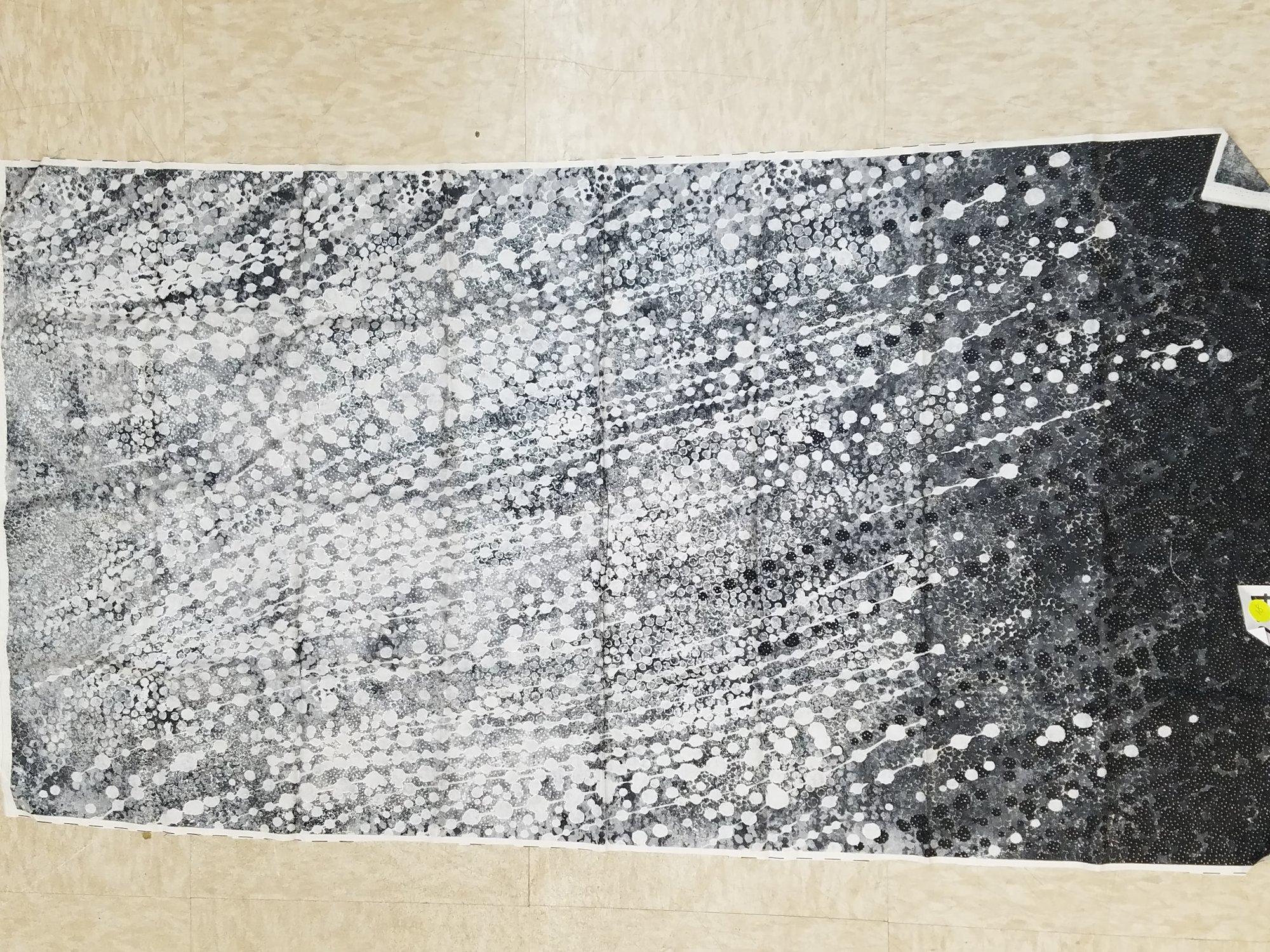 panel 234 shimer echos black