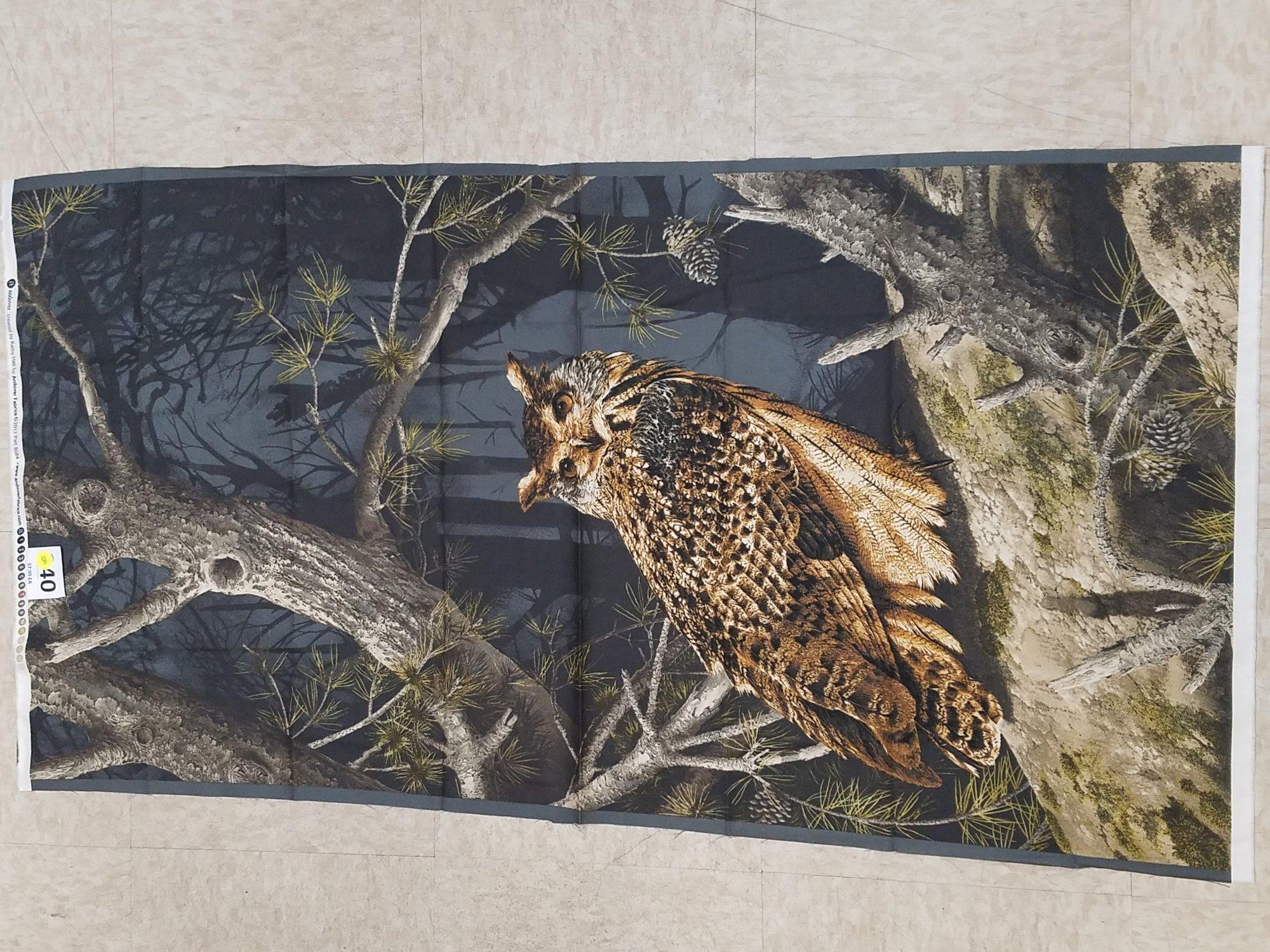 panel 240 Owl