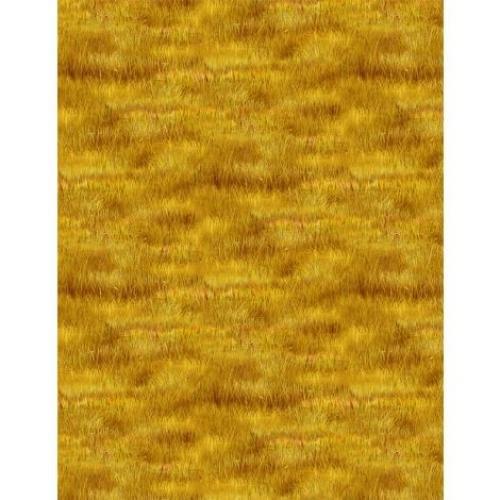 Hidden Valley by Kevin Daniel Grass Yellow