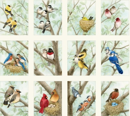 Elizabeth's Studio- Beautiful Birds Housing Boom 4309 Cream Panel