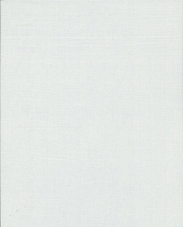 In The Beginning Fabrics- Exotic Weave 6EX 17 White