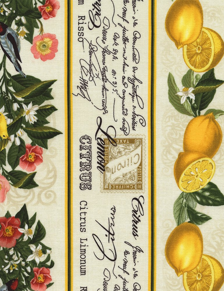 Timeless Treasures: Lemon Floral 11″ Stripe Citrus-C3827-Cream