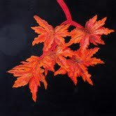 The DutchQuilter: Fall Leaves #3