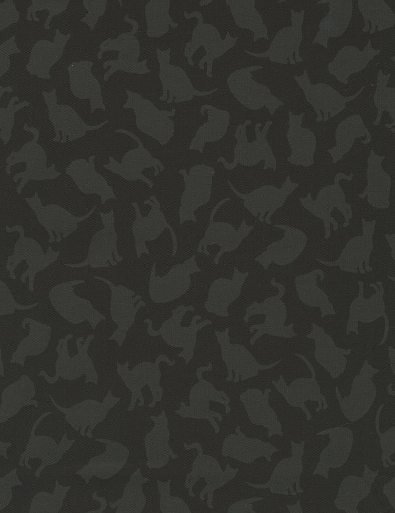 Timeless Treasures- Hue- C5143 Black