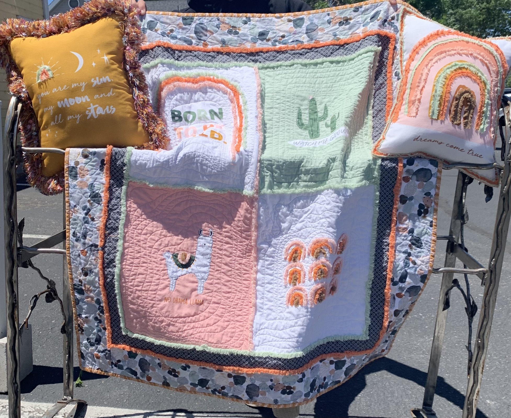 Born to be Wild quilt and pillow kit