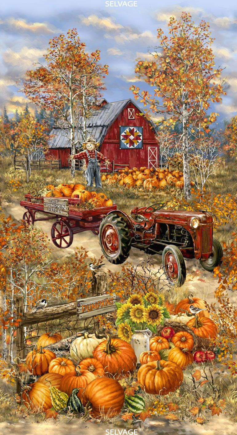 Timeless Treasures PANELDG-C7091 24 Inch Pumpkin Patch Panel