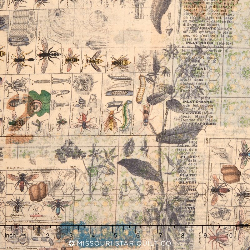 Eclectic Elements- Tim Holtz Wallflower- Entomology pwth027.8multi