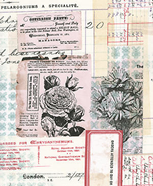 Eclectic Elements- Tim Holtz- Chrysanthemum PWTH093.MULTI