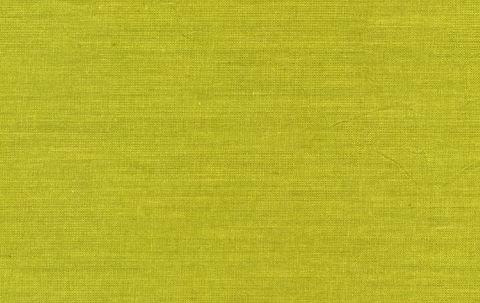 Rowan- Kaffe Fasssett- Shot Cotton Wovens- SC94 Sprout