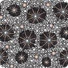 MS Textiles- Australian- Seven Sisters Black SSB -Designed by Marlene Doolan
