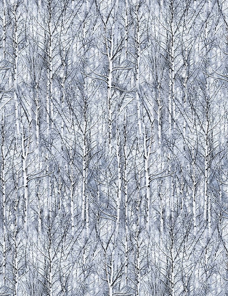 Timeless Treasures- Winter C6131 Frost