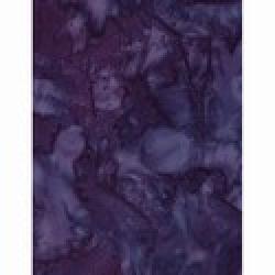 1895-424-Salvia