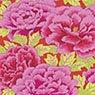 Kaffe Fassett - Stash - Kimono - Crimson / Magenta Item # GP33.CRMMG
