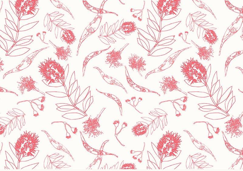 Kennard & Kennard - Amanda Brandl - Bush Gum Blossoms - Scribbly Gum - Pink on White